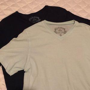 Bundle! 2 v-neck short sleeve shirts!